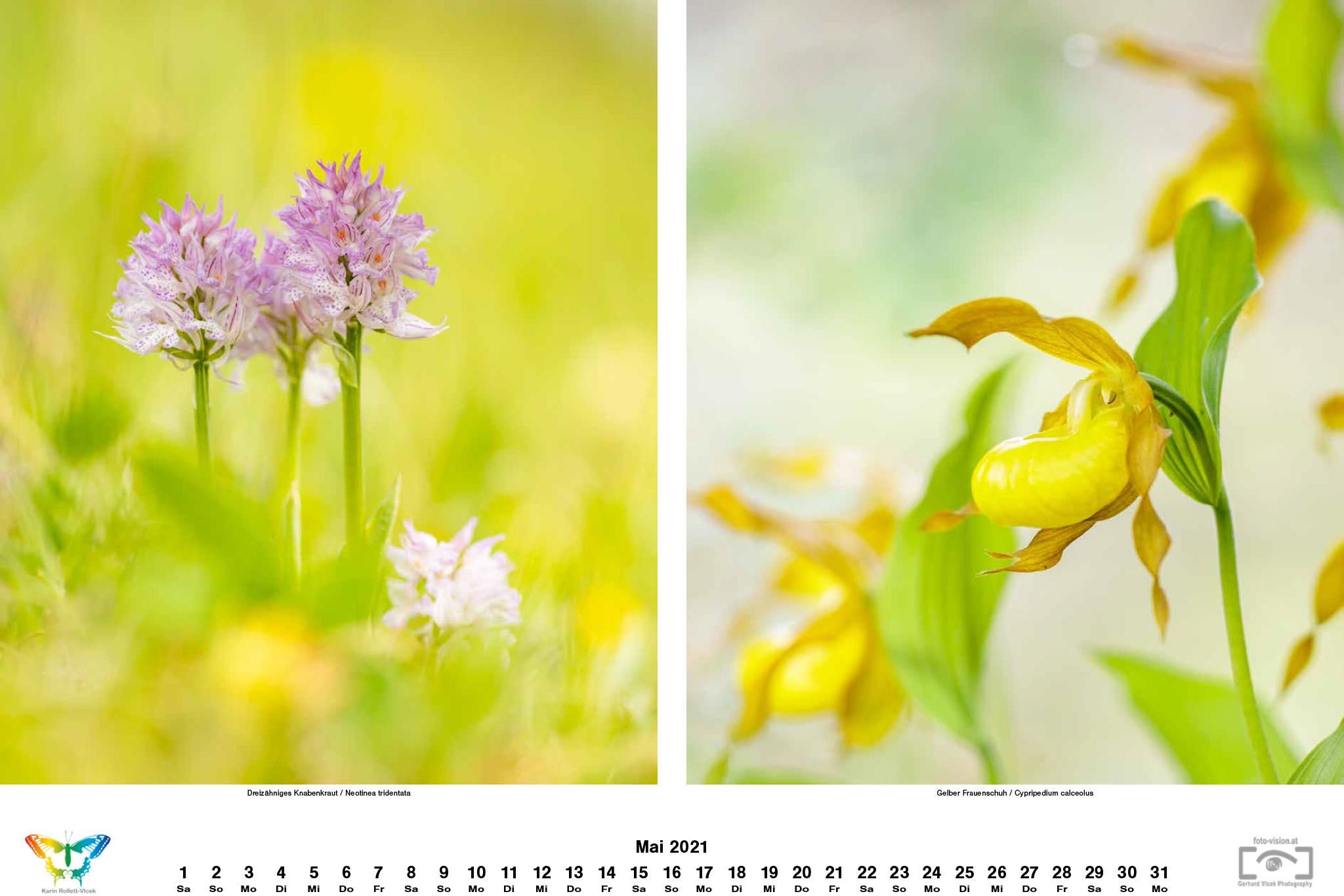 kalender_2021_06