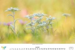 kalender_2021_08