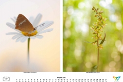 kalender_2021_09